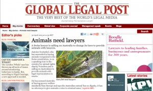Animals need lawyers