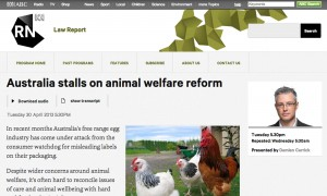 Australia stalls on animal welfare reform